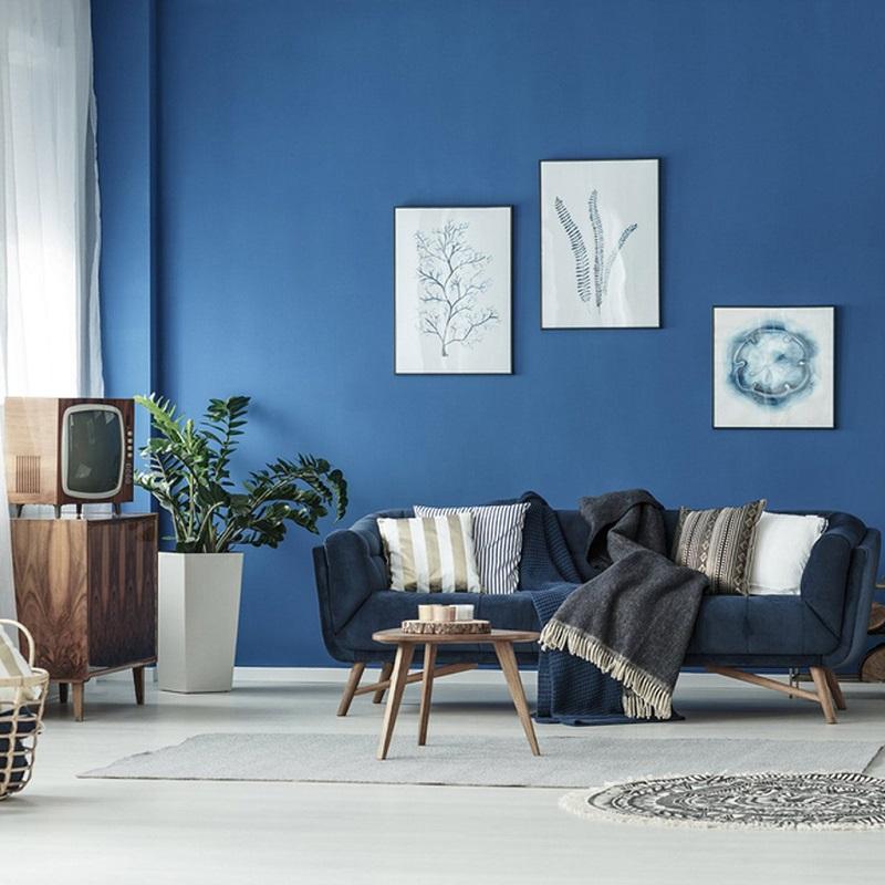 Sơn nhà xanh dương cho nội thất